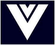 Van Viegen logo